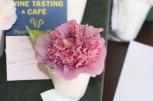 Camellia japonica Dona Herzilia De Freitas Magalhaes