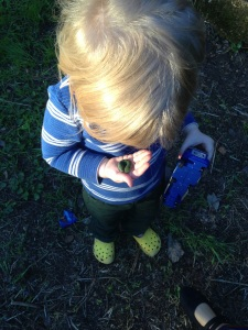 Children's curiosity in nature is something to be nurtured