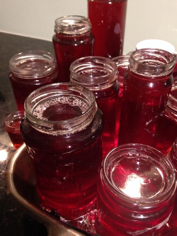 Rosella jelly in jars
