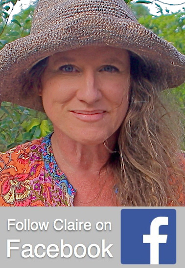 Click to visit Claire's Facebook page