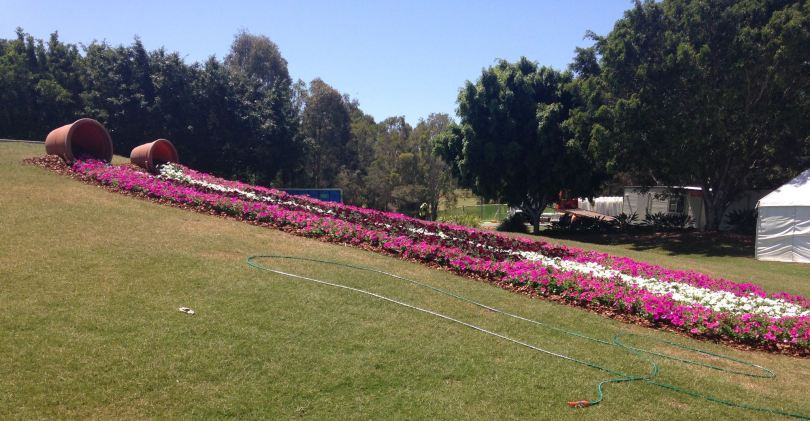 a large flower bed