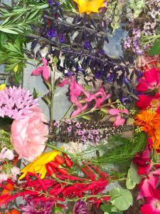 Edible flowers in the subtropics