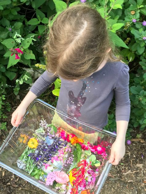 Edible flowers from our garden