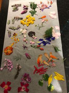 pressing edible flowers